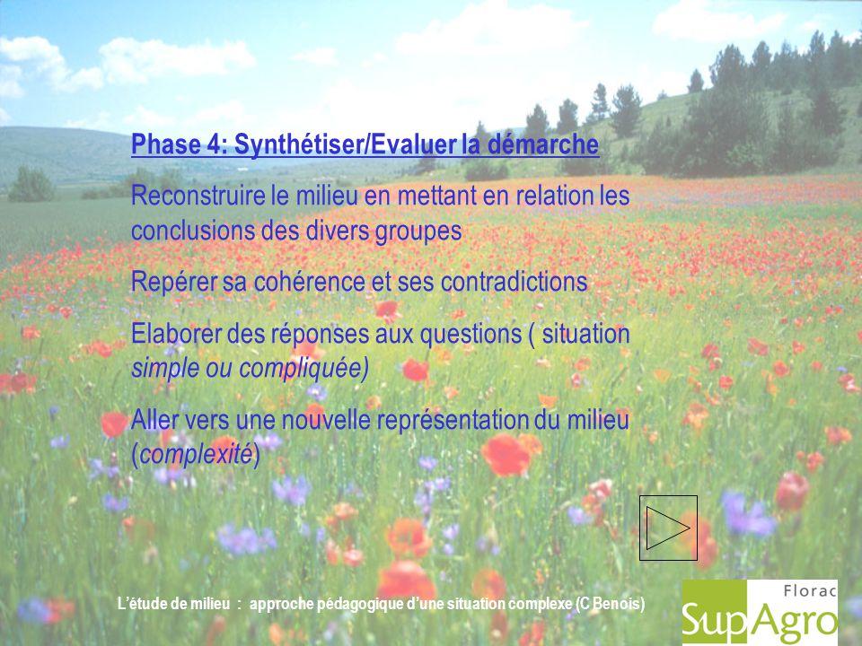 Létude de milieu : approche pédagogique dune situation complexe (C Benois) Phase 4: Synthétiser/Evaluer la démarche Reconstruire le milieu en mettant