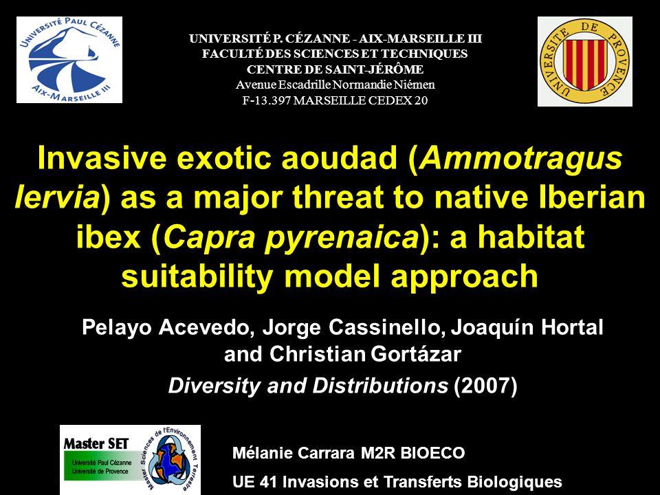 Invasive exotic aoudad (Ammotragus lervia) as a major threat to native Iberian ibex (Capra pyrenaica): a habitat suitability model approach Résultats Comparaison des traits écologiques Variables écologiques pertinentes dans les zones propres respectivement à Ammotragus lervia, aux deux espèces et à Capra pyrenaica Ammotragus lervia : fort pourcentage de maquis et de forêt (45 à 65 %) Capra pyrenaica : pourcentage de forêt et maquis équivalents et assez faibles (25%) Coexistence entre les 2 espèces : à un pourcentage de forêt élevé Structure de lhabitat