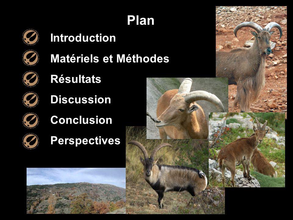 Plan Introduction Matériels et Méthodes Résultats Discussion Conclusion Perspectives