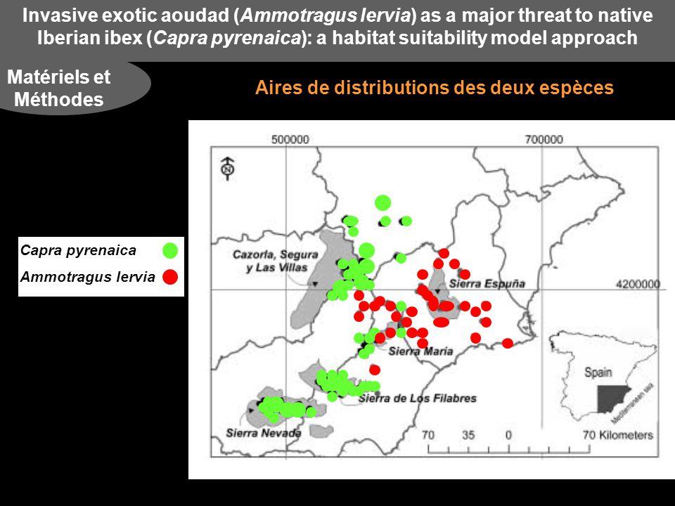 Invasive exotic aoudad (Ammotragus lervia) as a major threat to native Iberian ibex (Capra pyrenaica): a habitat suitability model approach Résultats Différents traits écologiques étudiés VariablesAmmotragus lerviaCapra pyrenaica Climat Précipitations hivernales (mm) Précipitation estivales (mm) Moyenne des T°C en été (°C) Gamme annuelle des T°C (°C) Géomorphologie Altitude maximales (m) Gamme altitudinale (m) Pente moyenne (degrés) Pente maximale (degrés) Structure de lhabitat Forêt (%) Prairie (%) Pression anthropique Distance des zones urbaines (m) Distance des routes (m) 108,65 40,73 21,9 15,21 1066,77 187,37 10,40 23,01 33,17 33,88 5714,69 2915,65 209,14 61,69 19,28 15,58 1670,46 204,59 11,21 22,24 39,80 17,08 7335,62 3431,15