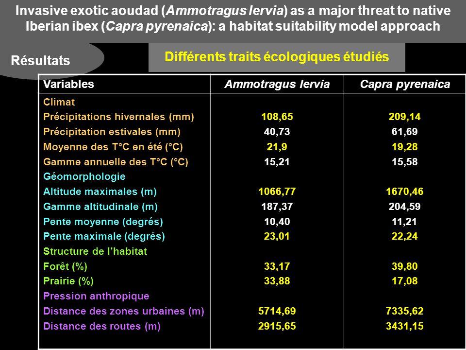 Invasive exotic aoudad (Ammotragus lervia) as a major threat to native Iberian ibex (Capra pyrenaica): a habitat suitability model approach Résultats Variables écologiques pertinentes dans les zones propres respectivement à Ammotragus lervia, aux deux espèces et à Capra pyrenaica Ammotragus lervia : précipitations hivernales faibles et T°C estivales élevées Capra pyrenaica : précipitations hivernales élevées et T°C estivales basses Coexistence entre les 2 espèces : précipitations + élevées et T°C intermédiaires Comparaison des traits écologiques Climat