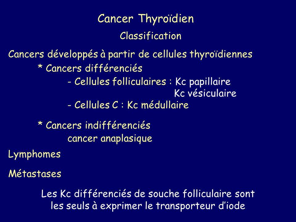 Cancer Thyroïdien Classification Cancers développés à partir de cellules thyroïdiennes * Cancers différenciés - Cellules folliculaires : Kc papillaire