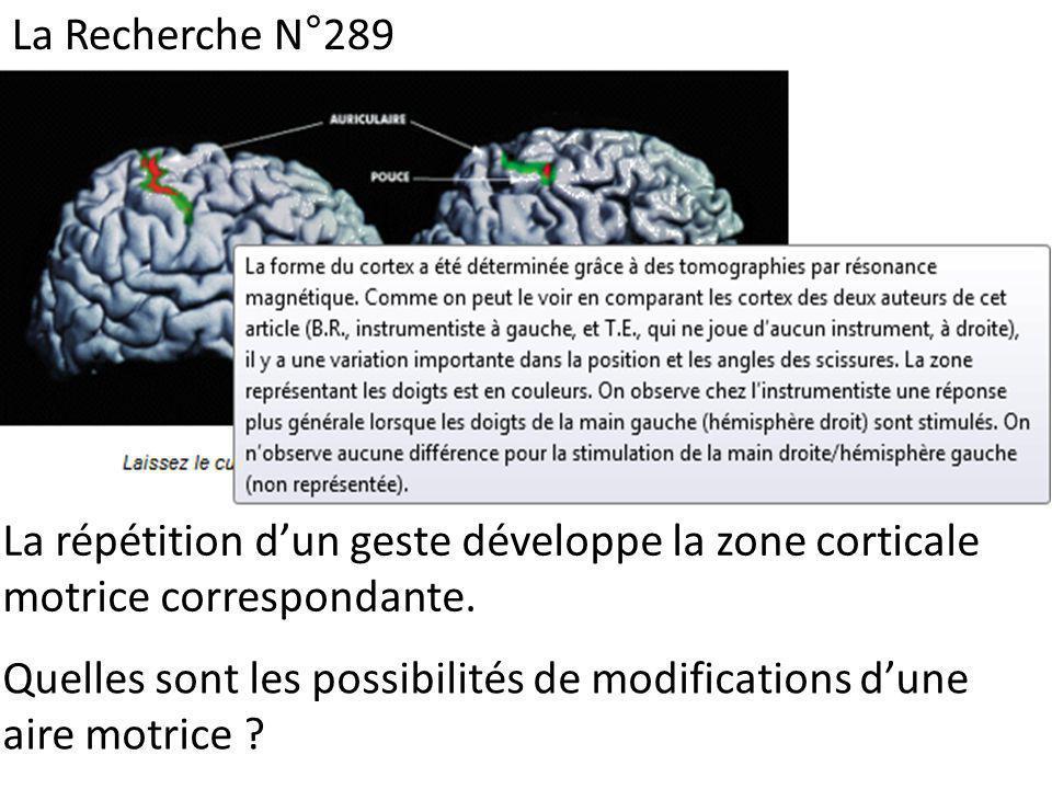 La Recherche N°289 La répétition dun geste développe la zone corticale motrice correspondante. Quelles sont les possibilités de modifications dune air