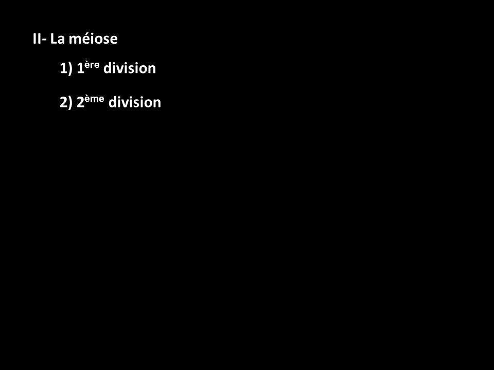 II- La méiose 1) 1 ère division 2) 2 ème division