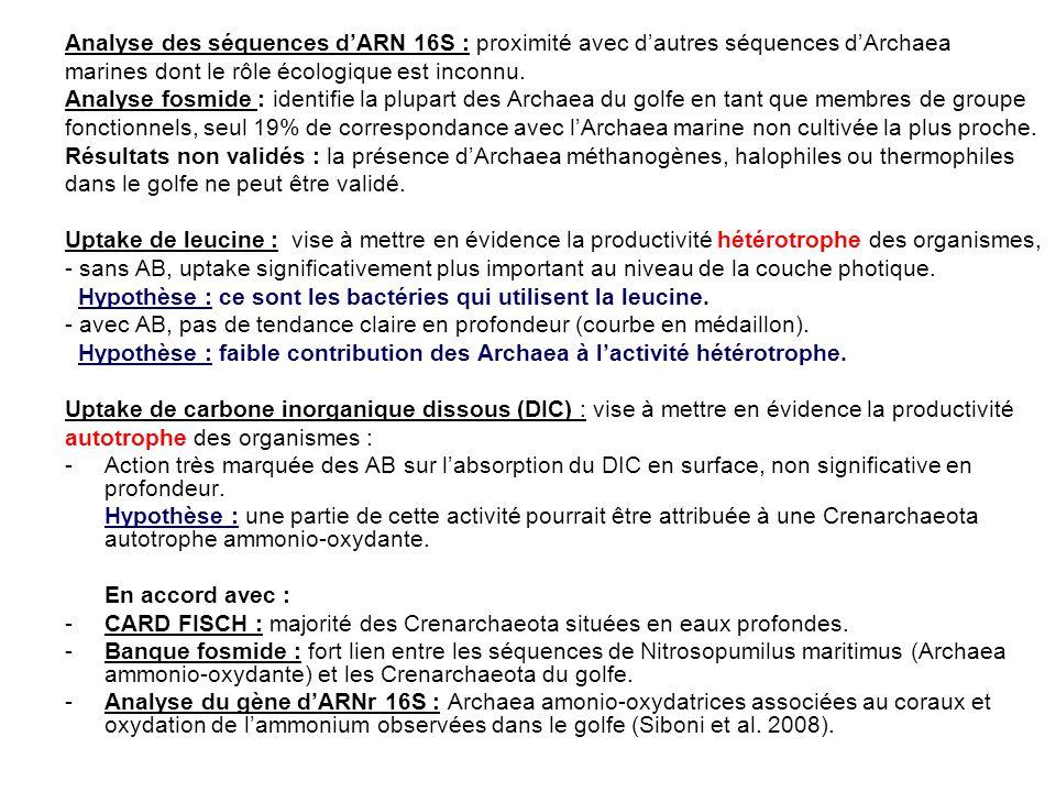Analyse des séquences dARN 16S : proximité avec dautres séquences dArchaea marines dont le rôle écologique est inconnu. Analyse fosmide : identifie la