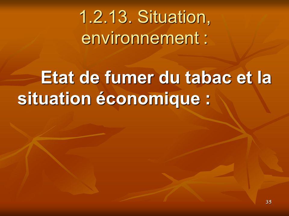 35 1.2.13. Situation, environnement : Etat de fumer du tabac et la situation économique :