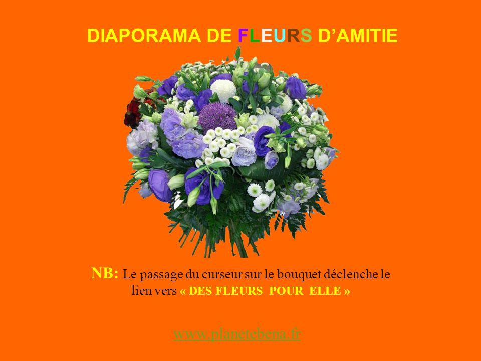 NB: Le passage du curseur sur le bouquet déclenche le lien vers « DES FLEURS POUR ELLE » DIAPORAMA DE FLEURS DAMITIE www.planetebena.fr