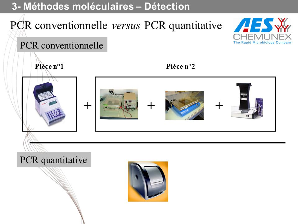 PCR conventionnelle versus PCR quantitative + ++ PCR conventionnelle PCR quantitative Pièce n°1Pièce n°2 3- Méthodes moléculaires – Détection