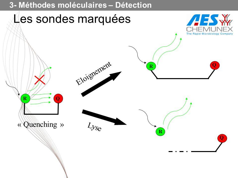 Les sondes marquées RQ Eloignement Lyse R Q « Quenching » Q R 3- Méthodes moléculaires – Détection