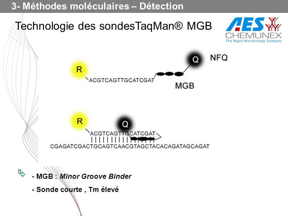 Technologie des sondesTaqMan® MGB - MGB : Minor Groove Binder - Sonde courte, Tm élevé 3- Méthodes moléculaires – Détection