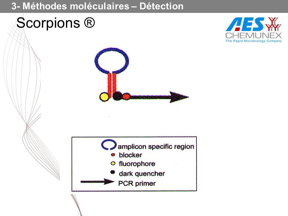 Scorpions ® 3- Méthodes moléculaires – Détection