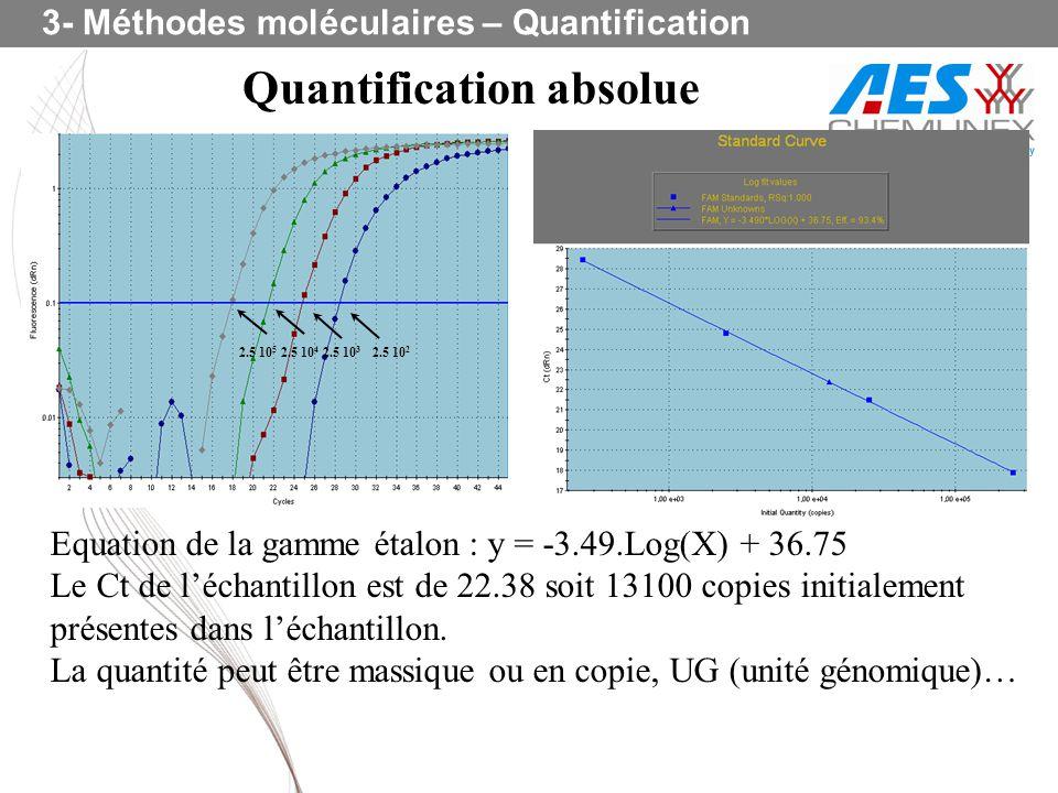 Quantification absolue Equation de la gamme étalon : y = -3.49.Log(X) + 36.75 Le Ct de léchantillon est de 22.38 soit 13100 copies initialement présen