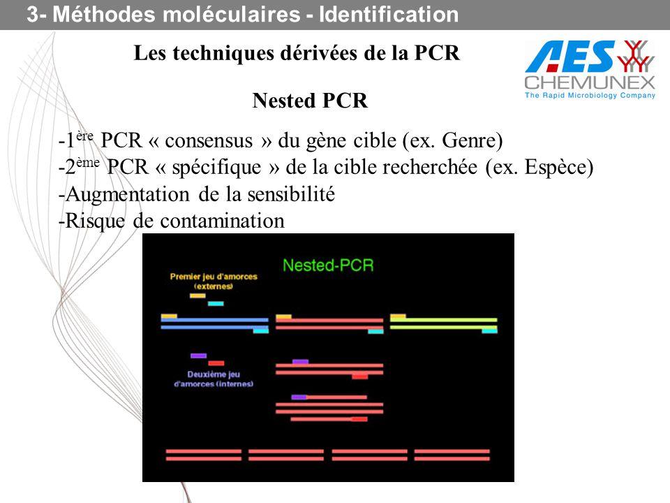 Les techniques dérivées de la PCR Nested PCR -1 ère PCR « consensus » du gène cible (ex. Genre) -2 ème PCR « spécifique » de la cible recherchée (ex.