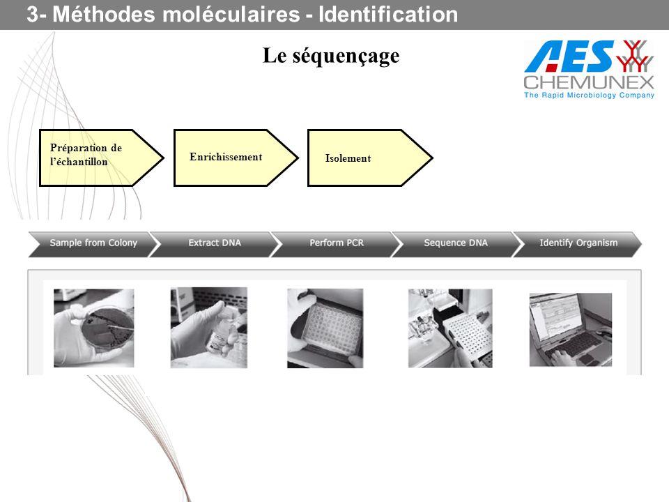 Le séquençage 3- Méthodes moléculaires - Identification Préparation de léchantillon Enrichissement Isolement