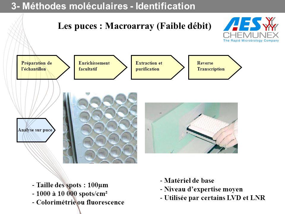 Les puces : Macroarray (Faible débit) 3- Méthodes moléculaires - Identification - Matériel de base - Niveau dexpertise moyen - Utilisée par certains L
