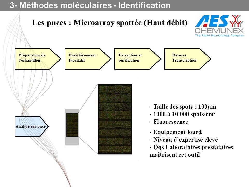 Les puces : Microarray spottée (Haut débit) 3- Méthodes moléculaires - Identification - Equipement lourd - Niveau dexpertise élevé - Qqs Laboratoires