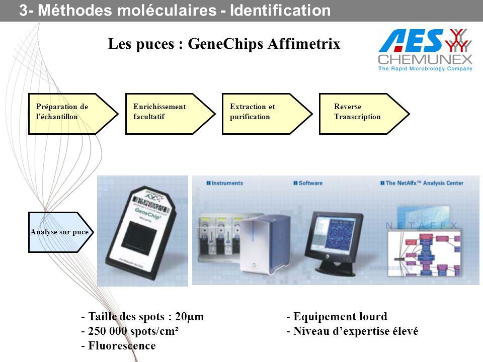 Les puces : GeneChips Affimetrix Préparation de léchantillon Enrichissement facultatif Extraction et purification Reverse Transcription Analyse sur pu