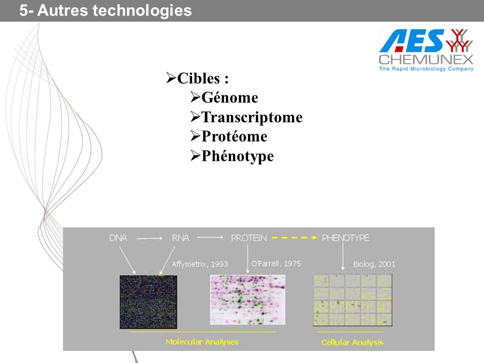 5- Autres technologies Cibles : Génome Transcriptome Protéome Phénotype