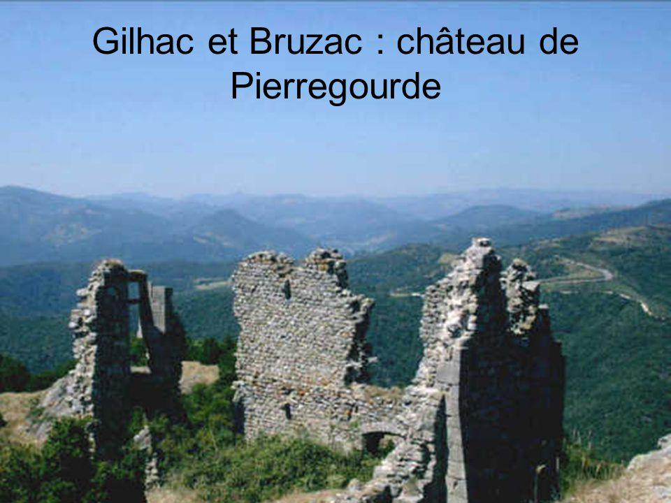 Genestelle, Château de Craux
