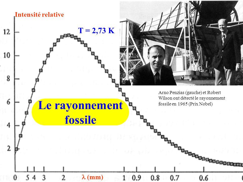 Labondance relatrive des éléments légers densité actuelle de lunivers (g/cm³) masse critique c = 10 -29 g/cm³ m p = 1,67 10 -24 g