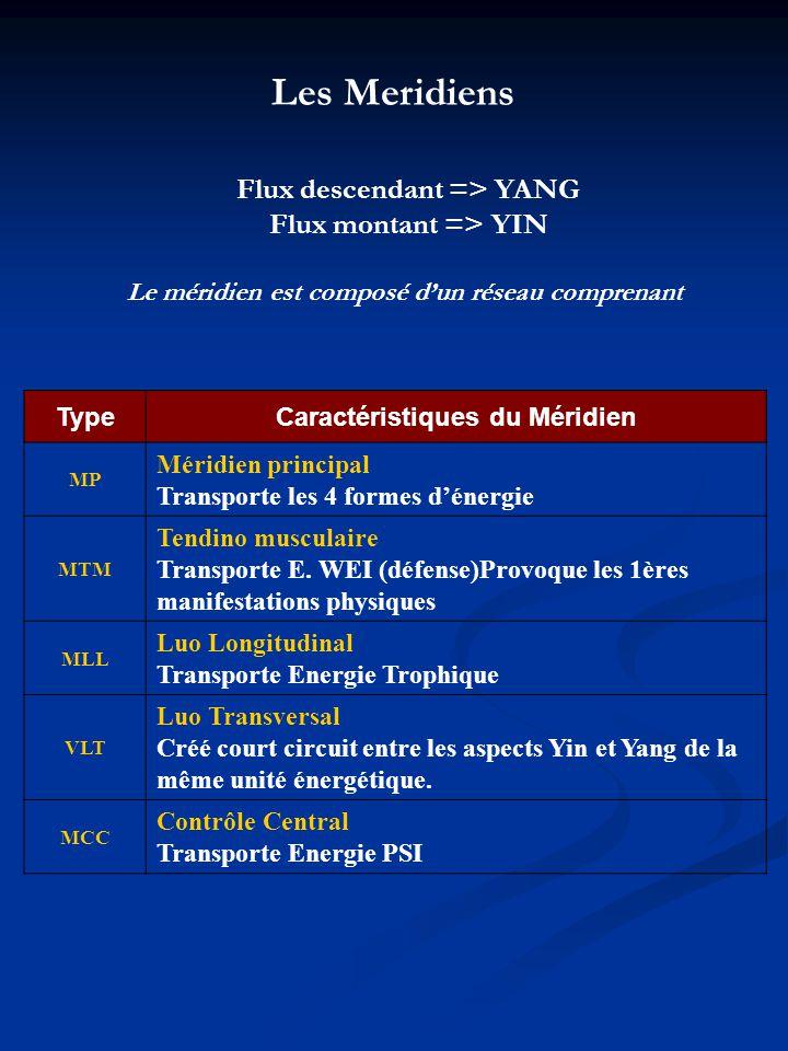 TypeCaractéristiques du Méridien MP Méridien principal Transporte les 4 formes dénergie MTM Tendino musculaire Transporte E. WEI (défense)Provoque les