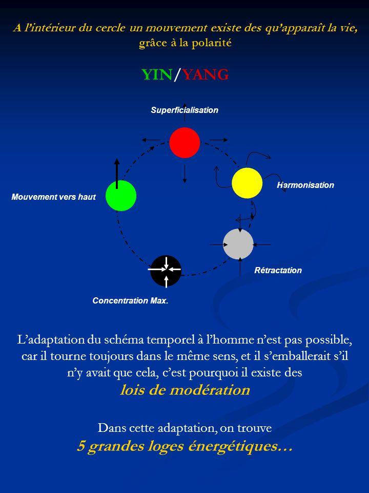 Superficialisation Harmonisation Rétractation Concentration Max. Mouvement vers haut A lintérieur du cercle un mouvement existe des quapparaît la vie,