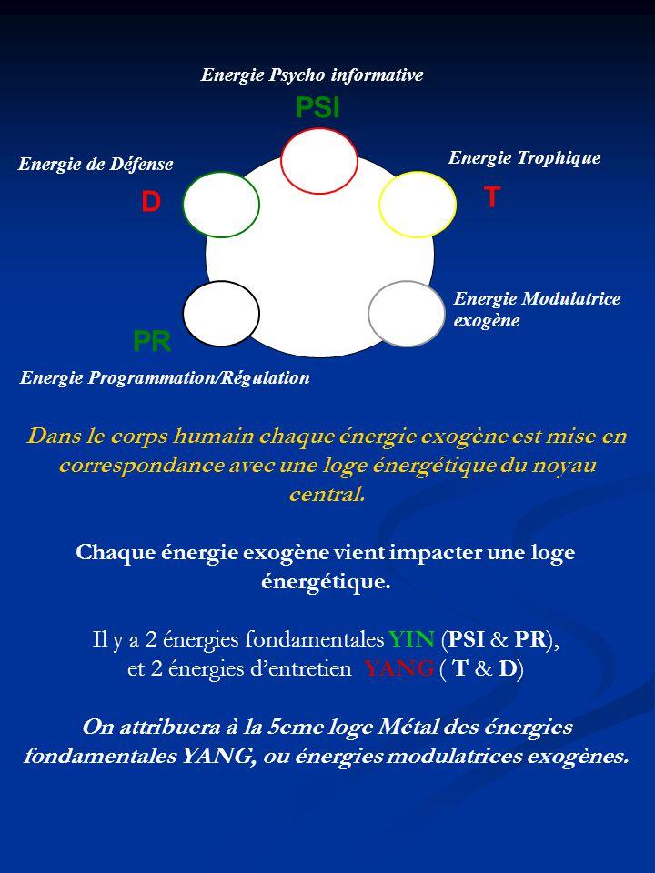 Energie Programmation/Régulation Energie Psycho informative Energie Trophique Energie Modulatrice exogène Energie de Défense PSI T PR D Dans le corps