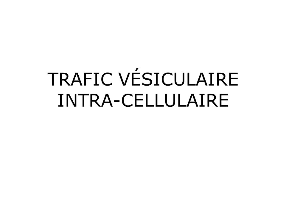 TRAFIC VÉSICULAIRE INTRA-CELLULAIRE