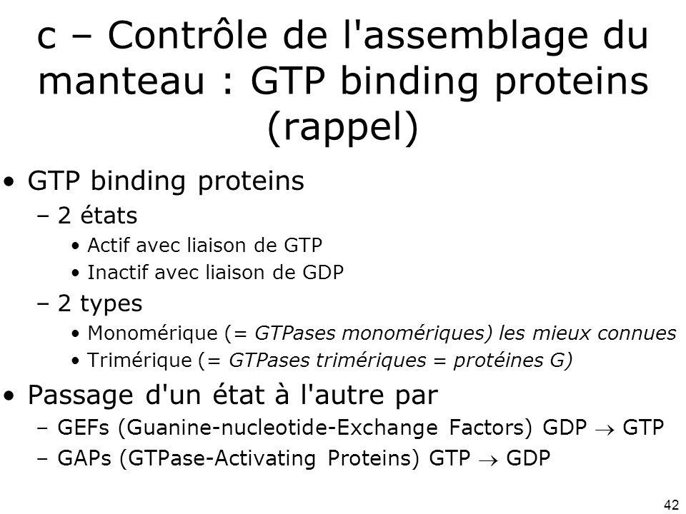 42 c – Contrôle de l assemblage du manteau : GTP binding proteins (rappel) GTP binding proteins –2 états Actif avec liaison de GTP Inactif avec liaison de GDP –2 types Monomérique (= GTPases monomériques) les mieux connues Trimérique (= GTPases trimériques = protéines G) Passage d un état à l autre par –GEFs (Guanine-nucleotide-Exchange Factors) GDP GTP –GAPs (GTPase-Activating Proteins) GTP GDP