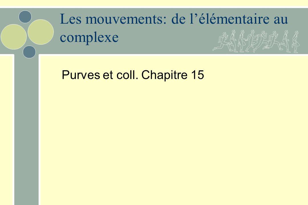 Les mouvements: de lélémentaire au complexe Purves et coll. Chapitre 15