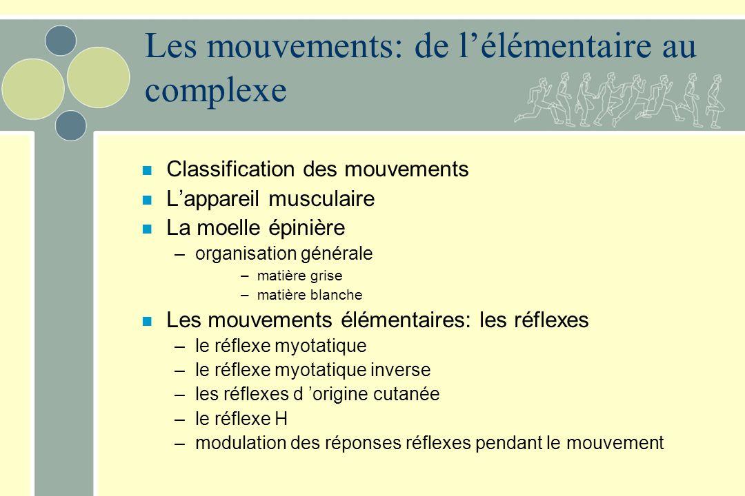 n Classification des mouvements n Lappareil musculaire n La moelle épinière –organisation générale –matière grise –matière blanche n Les mouvements él
