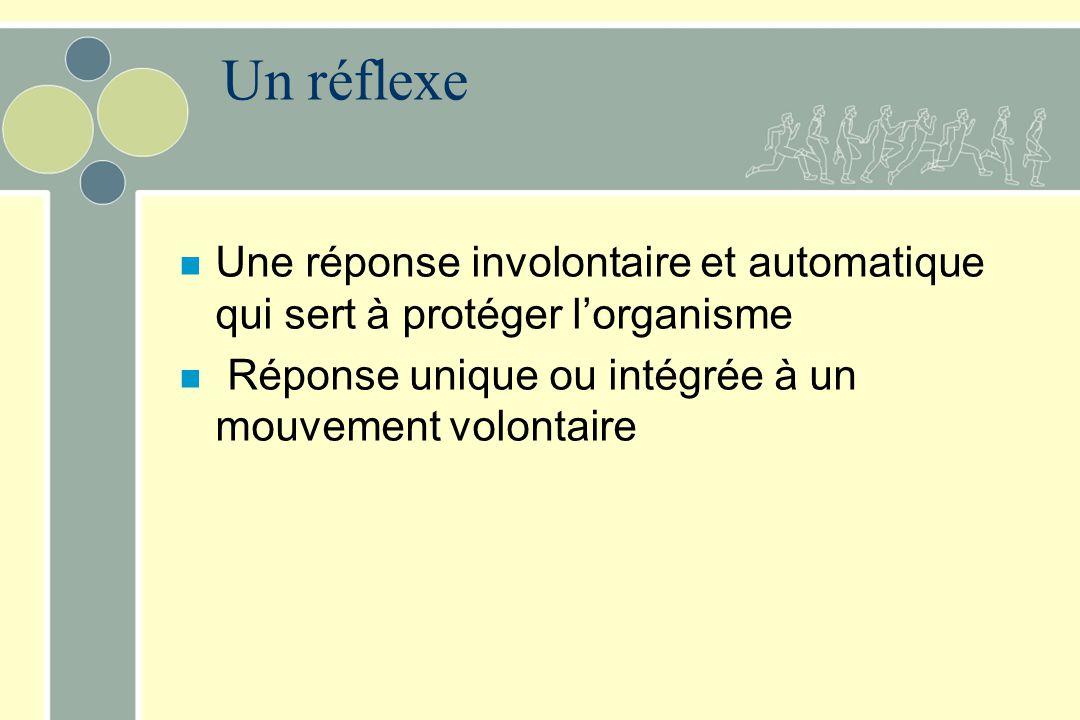 Un réflexe n Une réponse involontaire et automatique qui sert à protéger lorganisme n Réponse unique ou intégrée à un mouvement volontaire