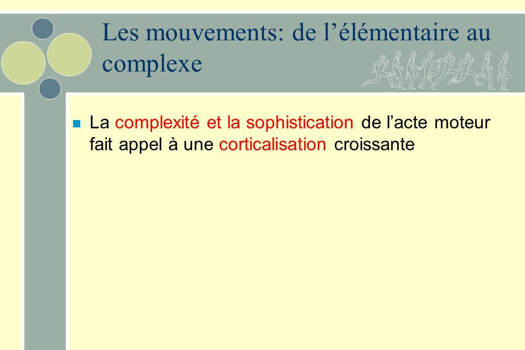 n La complexité et la sophistication de lacte moteur fait appel à une corticalisation croissante Les mouvements: de lélémentaire au complexe