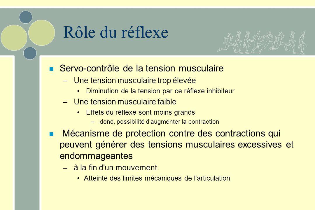 Rôle du réflexe n Servo-contrôle de la tension musculaire – Une tension musculaire trop élevée Diminution de la tension par ce réflexe inhibiteur – Un