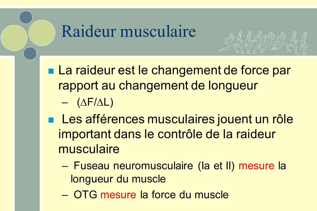 Raideur musculaire n La raideur est le changement de force par rapport au changement de longueur – ( F/ L) n Les afférences musculaires jouent un rôle