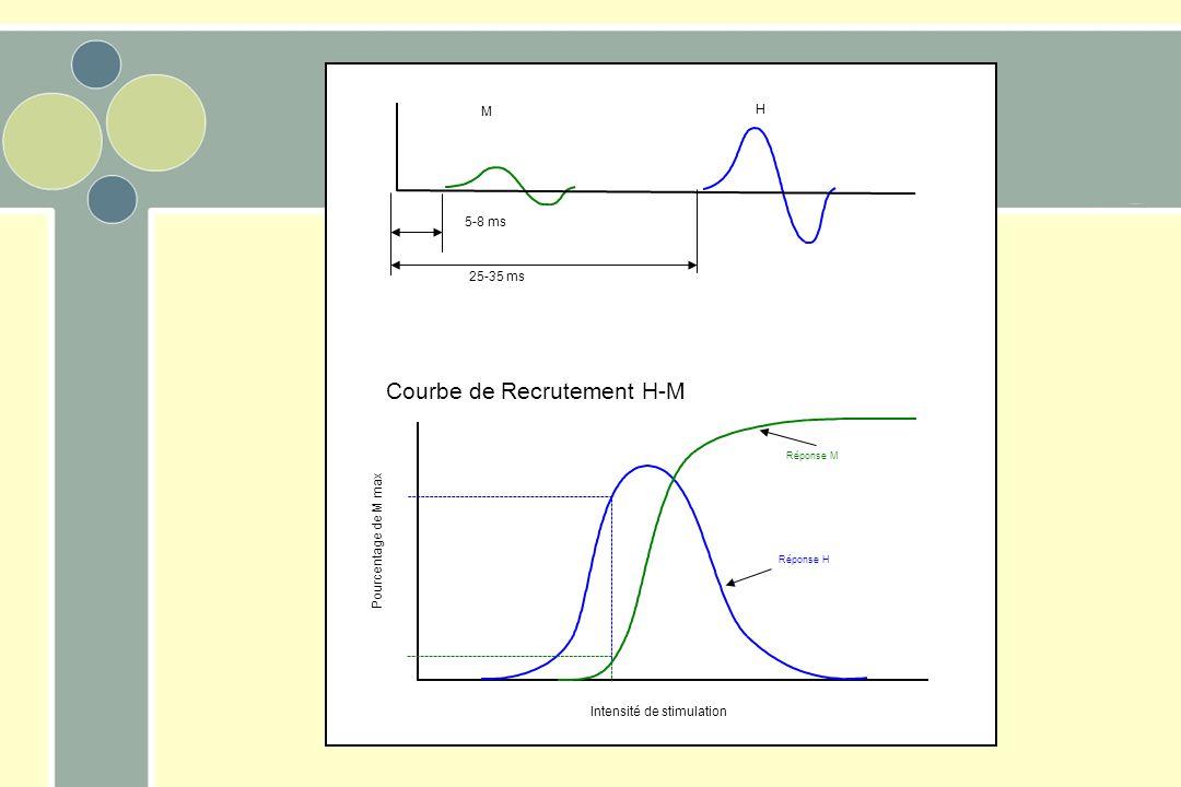 Pourcentage de M max Intensité de stimulation Courbe de Recrutement H-M Réponse H Réponse M M H 5-8 ms 25-35 ms