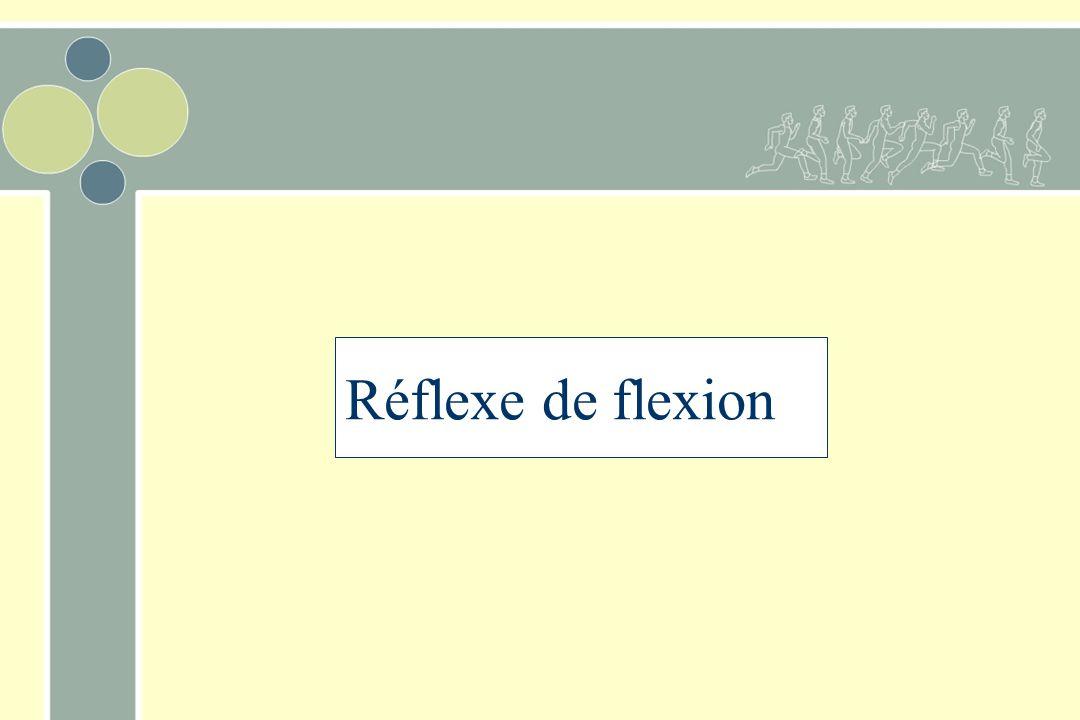 Réflexe de flexion