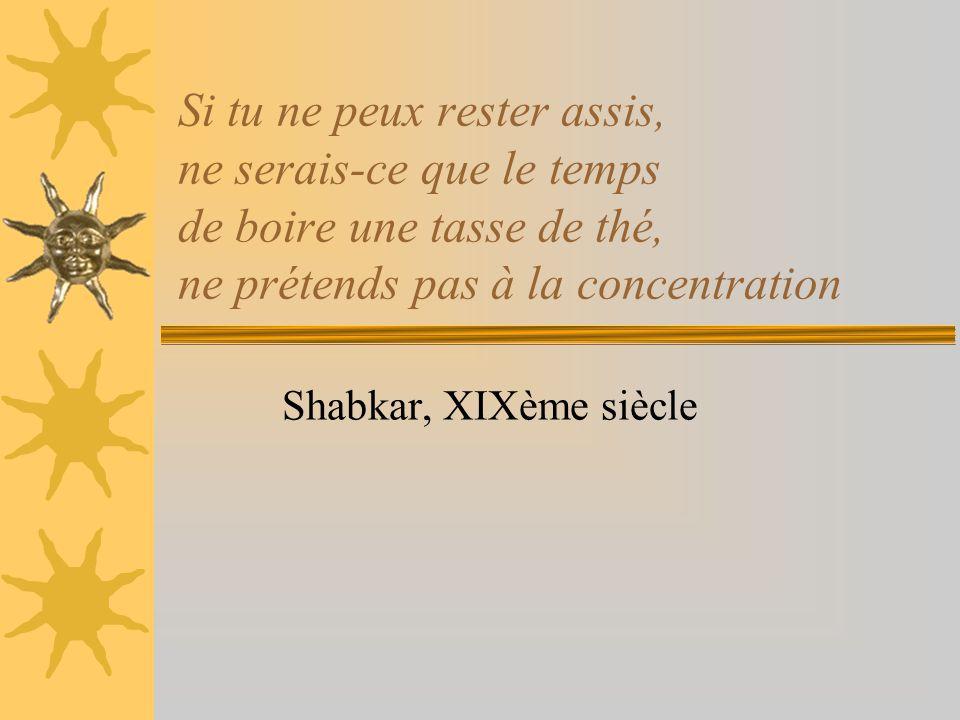 Si tu ne peux rester assis, ne serais-ce que le temps de boire une tasse de thé, ne prétends pas à la concentration Shabkar, XIXème siècle