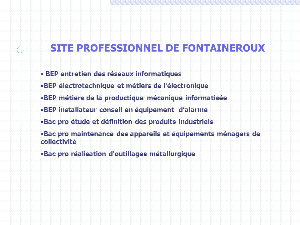 SITE PROFESSIONNEL DE FONTAINEROUX BEP entretien des réseaux informatiques BEP électrotechnique et métiers de l'électronique BEP métiers de la product