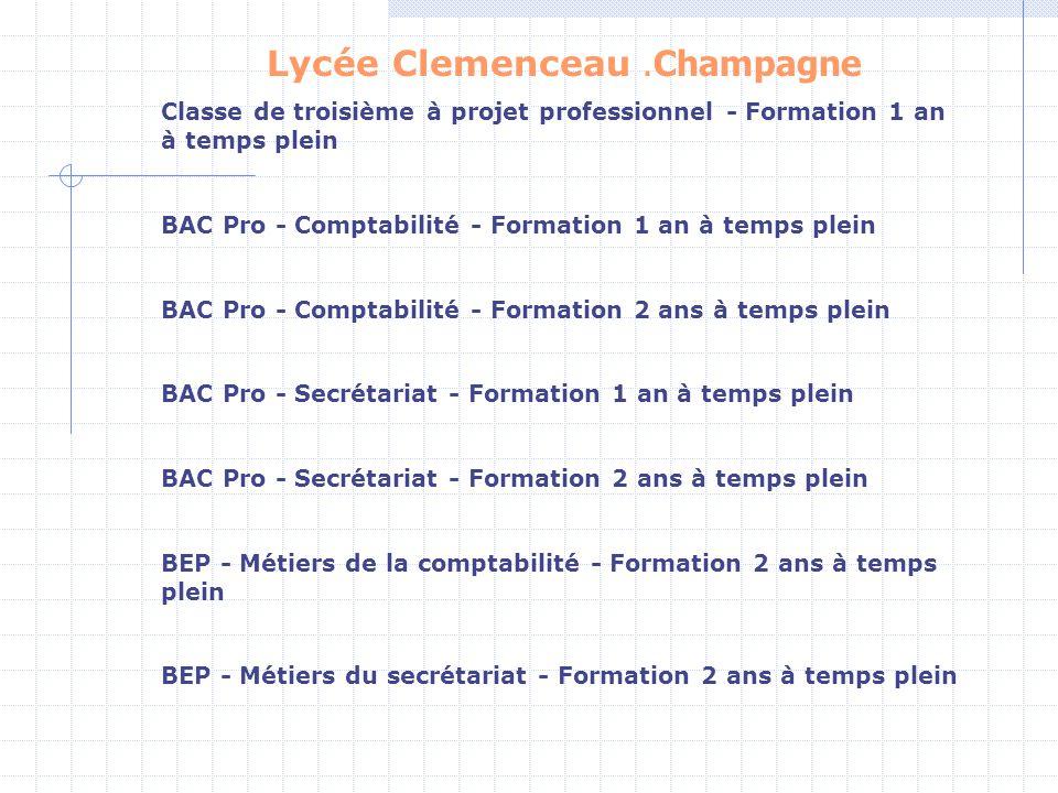 Lycée Clemenceau.Champagne Classe de troisième à projet professionnel - Formation 1 an à temps plein BAC Pro - Comptabilité - Formation 1 an à temps p