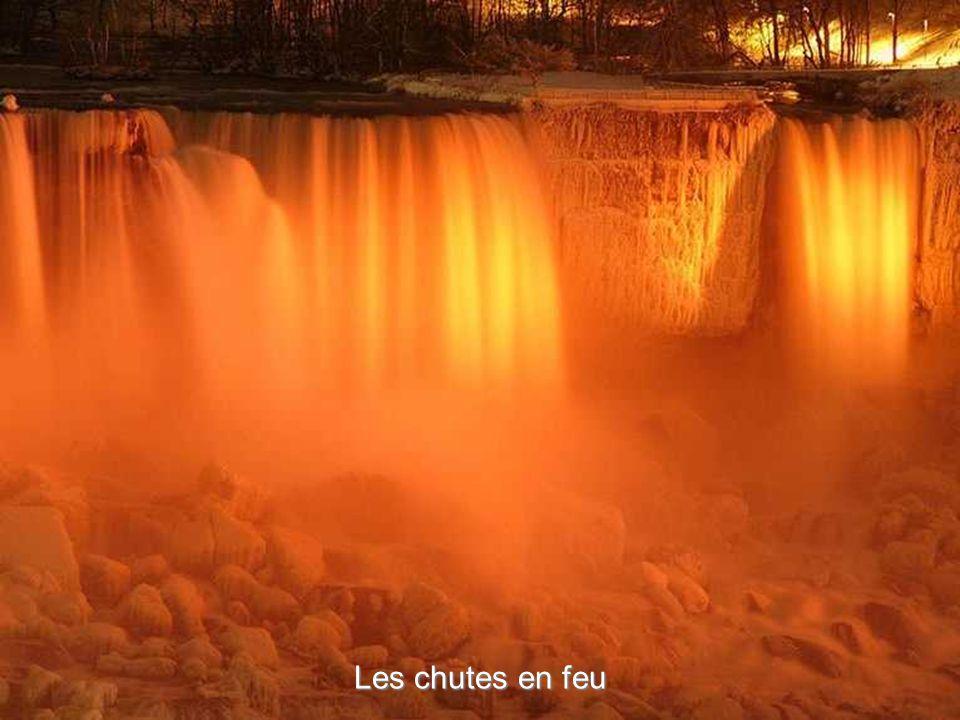 Le festival spectaculaire des lumières d'hiver fonctionne à partir de fin novembre jusqu à début janvier