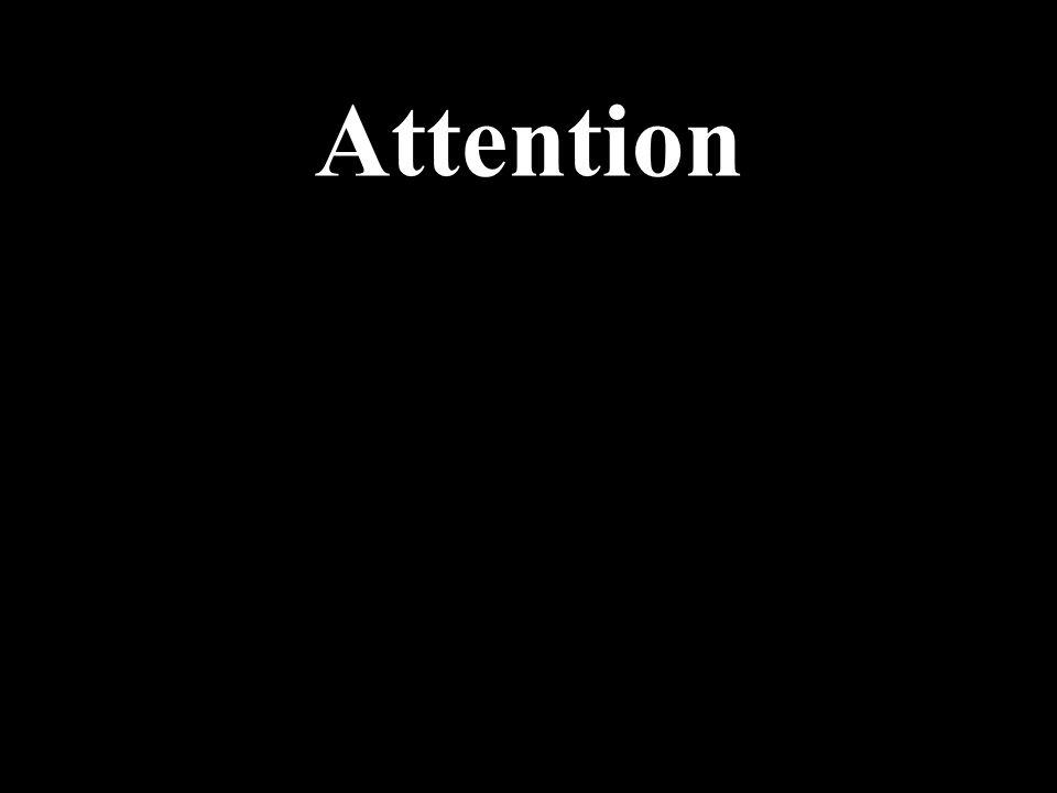Ne loubliez pas …