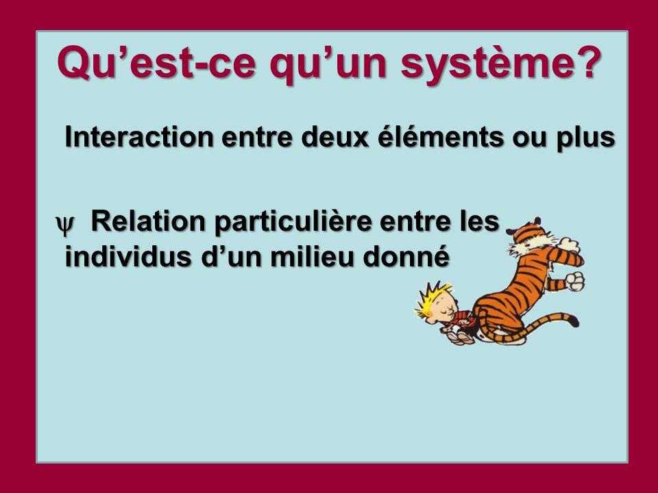 Quest-ce quun système? Interaction entre deux éléments ou plus Relation particulière entre les individus dun milieu donné Relation particulière entre