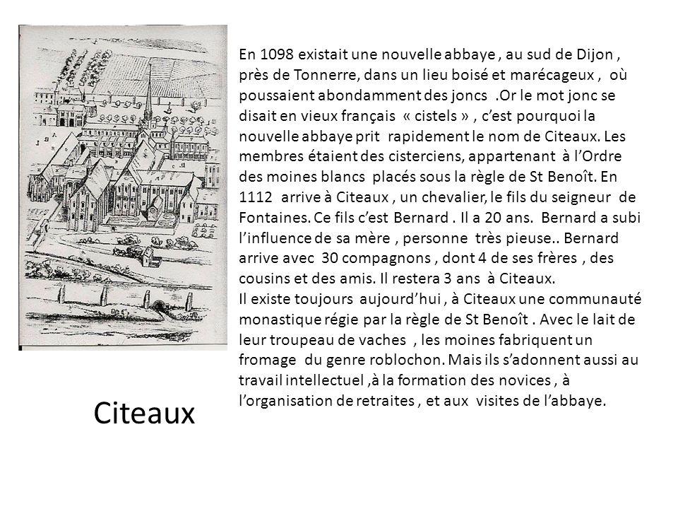 En 1098 existait une nouvelle abbaye, au sud de Dijon, près de Tonnerre, dans un lieu boisé et marécageux, où poussaient abondamment des joncs.Or le m