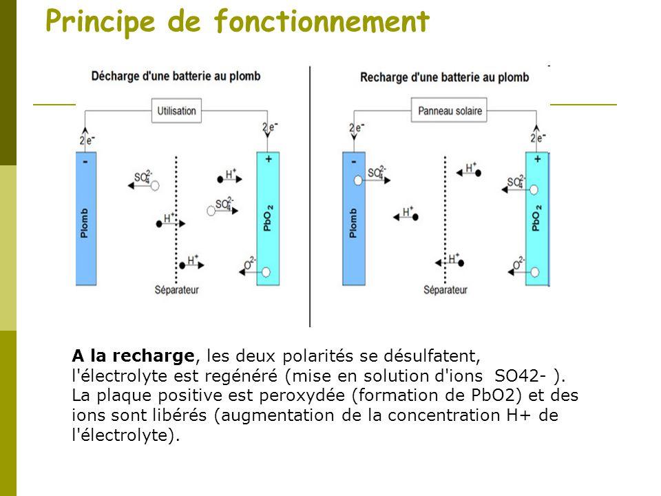 Principe de fonctionnement A la recharge, les deux polarités se désulfatent, l'électrolyte est regénéré (mise en solution d'ions SO42- ). La plaque po