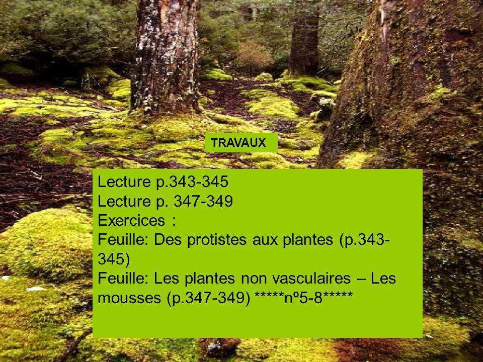 Lecture p.343-345 Lecture p. 347-349 Exercices : Feuille: Des protistes aux plantes (p.343- 345) Feuille: Les plantes non vasculaires – Les mousses (p