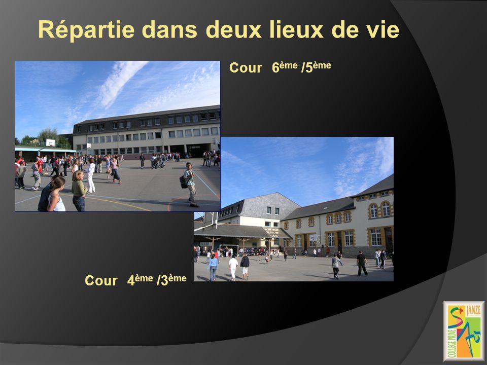 Répartie dans deux lieux de vie Cour 6 ème /5 ème Cour 4 ème /3 ème