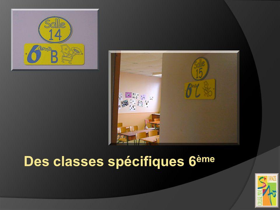 Des classes spécifiques 6 ème