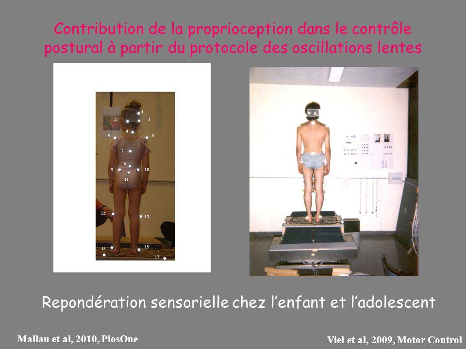 Contribution de la proprioception dans le contrôle postural à partir du protocole des oscillations lentes Repondération sensorielle chez lenfant et la