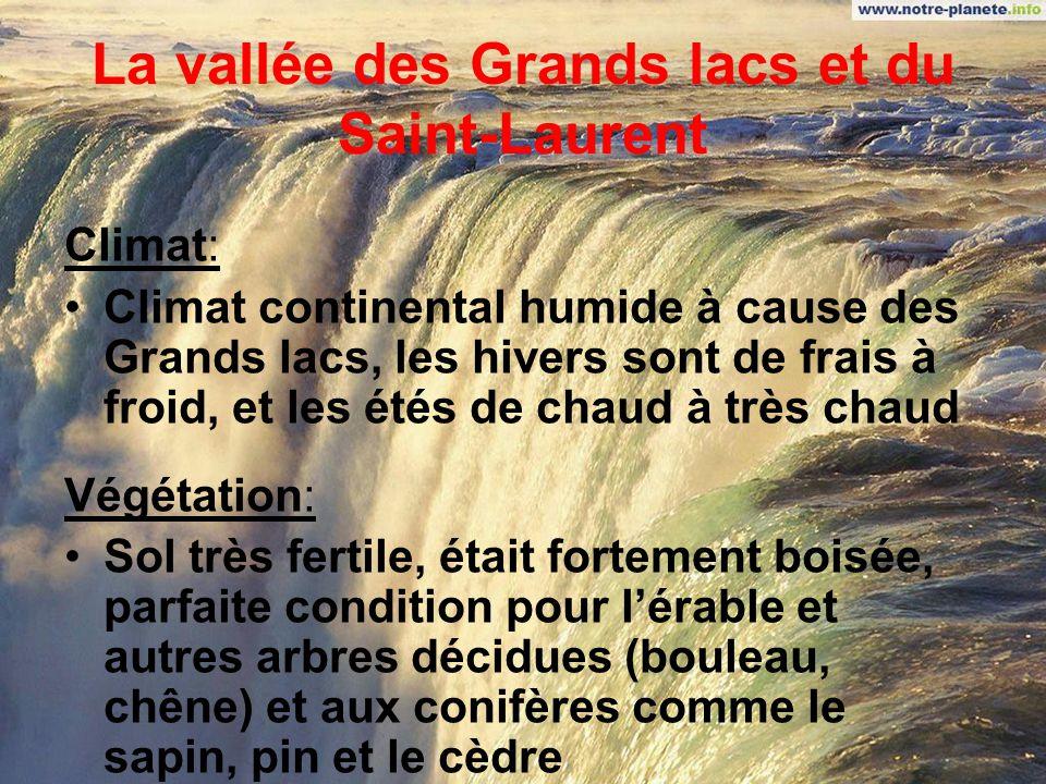 La vallée des Grands lacs et du Saint-Laurent Topographie: Escarpements du long des grands lacs, telle que Niagara Coupé en deux par le Bouclier près de Kingston, continue du long du Saint- Laurent jusquaux îles Anticosti Paysage onduleux, collines, vallées profondes, plaines de chaque coté du fleuve